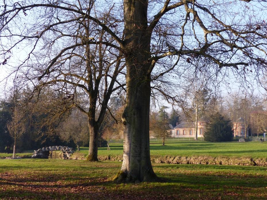 Domaine national de rambouillet slap paysage for Jardin anglais rambouillet